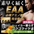 EAA BODYVEL 1000g 1kg さっぱりシトラス風味 アミノ酸 BCAA 筋肉 女性 男性 ダイエット プロテイン HMB サプリ 必須アミノ酸9種完全配合