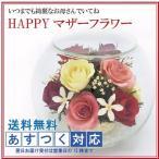 HAPPYマザーフラワー 大サイズ カラーミックス 名入れ無し あすつく プリザーブドフラワー 花束 バラ 母の日 プレゼント ギフト お母さん おばあちゃん