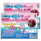 CAROL 獣医さんのうんち袋 猫トイレ用 100枚(50枚×2) 【消臭・抗菌のWパワー 米ぬか配合バイオマスうんち処理袋】