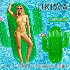 浮き輪 サボテン型  エアソファー  大人用 うきわ フロート マリンスポーツ プール 海水浴  ビーチグッズ 夏 夏休み 大きい 180×140cm
