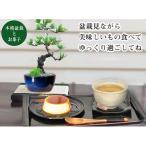 父の日 松の盆栽とお菓子のギフトセット  送料無料 京菓子と五葉松のミニ盆栽のセット