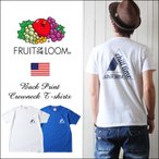 FRUIT OF THE LOOM ホンジュラス製ボディー トライアングルグラフィック Tシャツ 503pt1e メンズ アメカジ
