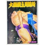 大相撲五月場所(パンフレット)1981年  /日本相撲協会