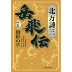 岳飛伝 15/北方謙三