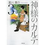 神様のカルテ 3/夏川草介
