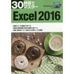30時間でマスターExcel 2016/実教出版企画開発部