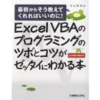 Excel VBAのプログラミングのツボとコツがゼッタイにわかる本 / 立山秀利