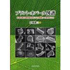 プラント・オパール図譜 走査型電子顕微鏡写真による植物ケイ酸体学入門 / 近藤錬三