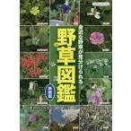 野草図鑑 身近な野草が見分けられる 日本の野草を季節ごとに網羅した野草図鑑の決定版!