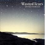 WASTED TEARS/浜田省吾