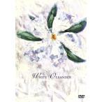ホワイト オランダー  DVD