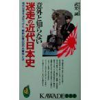 意外と知らない迷走の近代日本史 現代日本を決定づけた、維新以降の20の大事件とは KAWADE夢新書/武光誠(著者)