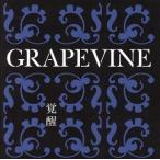 覚醒〜10th Anniversary Special Package〜/GRAPEVINE