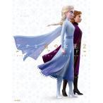 ディズニーアナと雪の女王2ビジュアルガイド