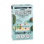 毎日クーポン有/ 自由研究おたすけキット DNAを調べよう