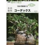 毎日クーポン有/ 多肉植物コーデックス/長田研