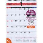 エコカレンダー壁掛 カレンダー A3 E12 (2020年1月始まり)