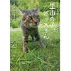 里山の子、さっちゃん 全身マヒの猫「サチ」と仲間たち/佐竹茉莉子