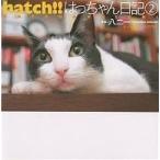 hatch!! はっちゃん日記 2/八二一