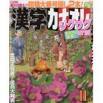 漢字カナオレ 2020年11月号