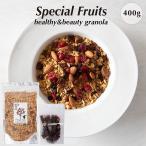 グラノーラSpecial Fruitsホームサイズ