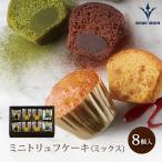 ブールミッシュ ミニトリュフケーキ(ミックス) 8個入り 洋菓子 内祝 贈り物 プレゼント ギフト