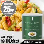 非常食 保存食 サバイバルフーズ 野菜のクリームパスタ(大缶1号缶=約600g)[約10食分]賞味期限2041年12月