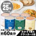 非常食 保存食 サバイバルフーズ バラエティ6缶セット 約60食相当(マカロニ&チーズ・野菜のクリームパスタ賞味期限2040年12月迄)