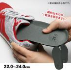 セーフティ・インソール 踏抜防止板 女性向け小さめサイズ 22.0〜24.0cm 安全靴 踏抜防止 踏み抜き防止 ボランティア [M便 1/2]
