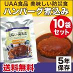 非常食 美味しい防災食 ハンバーグ煮込み 10袋セット(長期保存食 災害用 5年保存 レトルト)