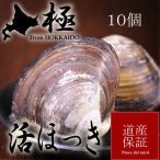 北海道産活ほっき貝10個  道産子に愛される高級貝 稚内・苫小牧産ホッキ貝 お刺身・バター焼き  送料無料