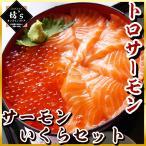 いくら トロサーモン セット イクラ醤油漬 + とろサーモン どんぶり 海鮮 詰め合わせ 鮭 魚卵 サーモン 大容量 鱒卵(税込)(送料無料)