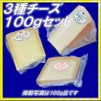 半田ファーム【3種チーズ】各100gセット【税・送料込】北海道/大樹町【本格的ナチュラルチーズ】