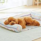 FRICH ペット ひんやり アルミプレート ペット 涼感プレート 暑さ対策 夏用 熱中症対策 冷たい 犬 猫 ウサギ 適用 (M 30×4