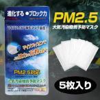 「PM2.5対応(N95規格フィルター使用) 大気汚染物質予防マスク ERA MASK 5枚入り」