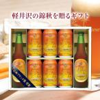 秋季限定 ビール お酒 ギフトセット クラフトビール THE軽井沢ビール 高原の錦秋(赤ビール) 330ml瓶2本 350ml缶6本 craft beer