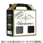 軽井沢ビール ビール ギフト キャリーボックス クラフトビール プチギフト用 お土産 手土産 化粧箱 缶2本用 キャリーボックス