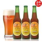 送料込 お試し3瓶セット ビール お酒 クラフトビール 高原の錦秋(赤ビール) 330ml瓶3本 craft beer
