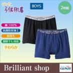 GUNZE グンゼ グンゼの子供肌着 オールシーズン for BOY'S 2枚組 男児用 ボクサーブリーフ (100〜160cm) BF81