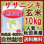 2016年(平成28年) 無農薬 玄米  10kg  ササニシキ 秋田県 ささにしき 石山農産