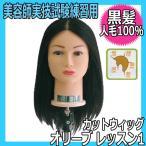 美容師国家試験練習用 黒髪カットウィッグ 人毛100% オリーブ レッスン1