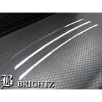 BRIGHTZ ウィッシュ 10 11 14 前期 超鏡面ステンレスメッキフロントバンパーモール