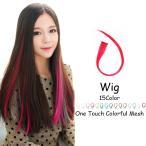 ウィッグ エクステ エクステンション 髪 カラー ロング コスプレ メッシュ ワンタッチ つけ毛 簡単装着 ハロウィン 仮装 パーティー ヘアアクセサリー
