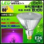 植物育成LED LG13W-PAR38 口金E26 ビーム球 観葉植物 植物栽培ライト 植物育成 ライト LED システム ガーデニング 家庭菜園 水耕栽培 ランプ 防湿 防雨型