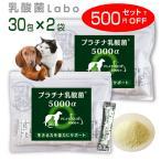 乳酸菌 ペット 犬 猫 サプリメント プラチナ乳酸菌5000α (50包入)送料無料!