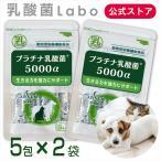 乳酸菌 ペット 犬 猫 サプリメント プラチナ乳酸菌5000α (5包入)