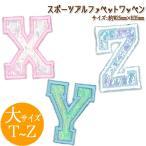 アルファベット ピンク ブルー ホワイト シンプル スポーツワッペン 大サイズ A〜S
