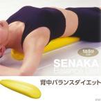 体歪み ストレッチ枕 姿勢 背中バランスダイエット