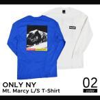 ONLY NY(オンリーニューヨーク) Mt. Marcy L/S T-Shirt Tee ロング Tシャツ ロンT 長袖 メンズ カットソー ティーシャツ ストリート スケート