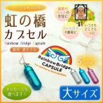 [名入れ メール便送料無料]虹の橋カプセル【大】//遺骨ペンダント ペット 供養